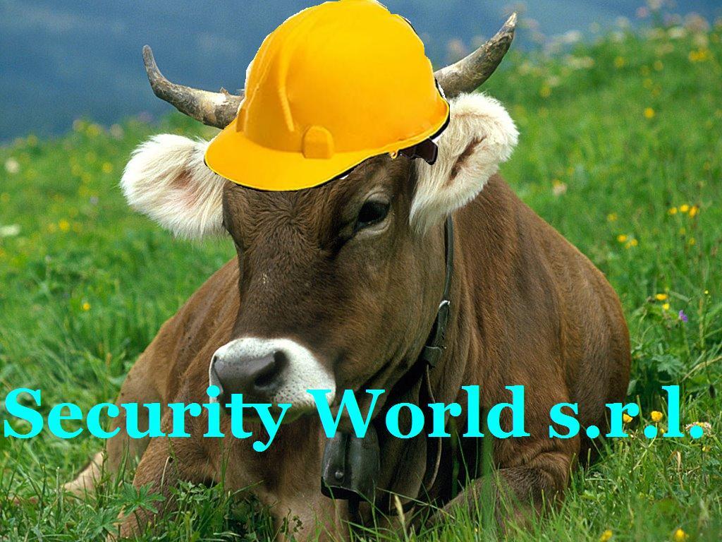 Security World Srl.